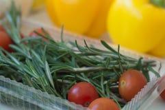 Nya gröna rosmarin, röda körsbärsröda tomater i en plast- mat cont arkivbilder
