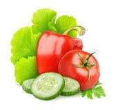 Nya grönsaker Royaltyfria Foton