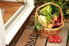 nya grönsaker för korg Royaltyfria Foton