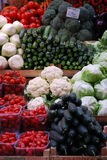 nya grönsaker för mat Arkivbild
