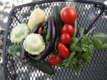nya grönsaker för rastermetall Royaltyfria Foton