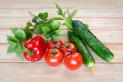 Nya grönsaker från trädgården på en trätabell Royaltyfri Fotografi