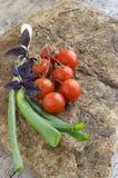 Nya grönsaker: körsbärsröda tomater, lök och basilika på en sten Arkivbilder