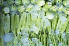Nya grönsaker med is Arkivfoto