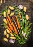 Nya grönsaker och örtingredienser för att laga mat med den gamla skeden på mörk lantlig träbakgrund Arkivbild