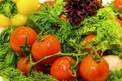 Nya grönsaker och gräsplaner Arkivbild