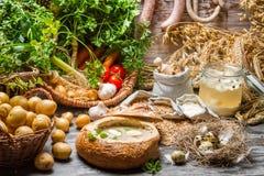 Nya grönsaker och hemlagad soppa Arkivfoton
