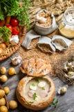 Nya grönsaker och hemlagad soppa Royaltyfria Bilder
