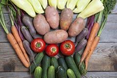 Nya grönsaker på trä bordlägger Royaltyfria Bilder