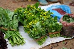 Nya grönsaker säljs på den canCau marknaden, den Simacai staden, Lao Cai, Vietnam Arkivbilder