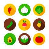 Nya grönsaker sänker cirkelsymboler arkivfoto