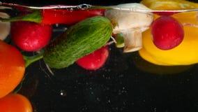 Nya grönsaker som faller med vatten på svart bakgrund stock video