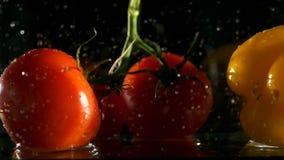 Nya grönsaker som faller med vatten på svart bakgrund arkivfilmer