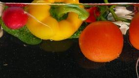 Nya grönsaker som faller med vatten på svart bakgrund lager videofilmer