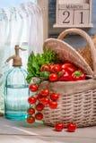 Nya grönsaker som skördas i vårdag Arkivbilder