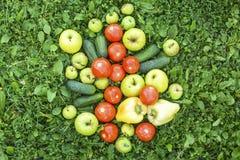Nya grönsaker spridda på gräset Fotografering för Bildbyråer
