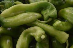 Nya grönsaker, sund näring, försäljning av mat Royaltyfri Fotografi