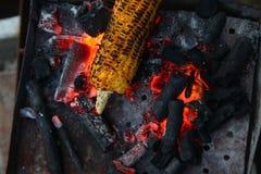 Nya grillade eller grillade majskolvar Grillad havre som är till salu på gatan Royaltyfri Bild