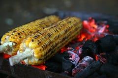 Nya grillade eller grillade majskolvar Grillad havre som är till salu på gatan Arkivfoto