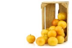 Nya gula plommoner i en träspjällåda arkivfoto