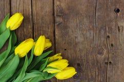 Nya gula tulpan på träbakgrundstexturer Royaltyfri Foto