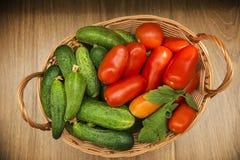 Nya gurkor och tomater i en korg på tabellen Arkivfoto