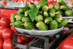 Nya gurkor på marknaden, Royaltyfria Bilder