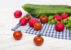 Nya gurkor, tomater, rädisa Royaltyfri Foto