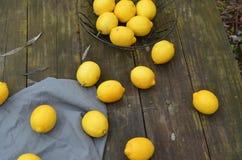Nya hela citroner som beskådas från fast utgift Royaltyfri Bild