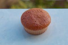 Nya hemlagade muffin Royaltyfria Bilder
