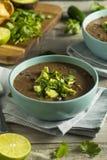 Nya hemlagade svarta Bean Soup Fotografering för Bildbyråer