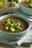 Nya hemlagade svarta Bean Soup Royaltyfri Fotografi