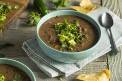 Nya hemlagade svarta Bean Soup Royaltyfria Bilder