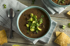 Nya hemlagade svarta Bean Soup Royaltyfri Foto