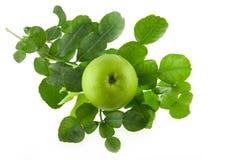 Nya isolerade Kaffirlimefruktleaves och grönt äpple Arkivfoto