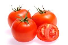 nya isolerade röda tomater Arkivbilder