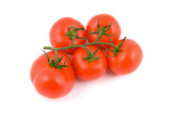nya isolerade tomater Arkivfoto