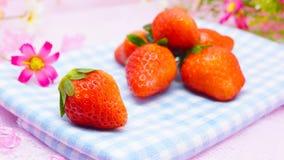 Nya japanska jordgubbar Arkivfoton