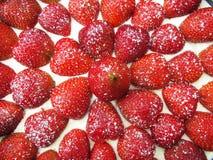 Nya jordgubbar överst av kakan Royaltyfri Bild