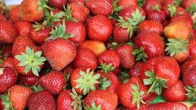 Nya jordgubbar, brutna jordgubbar fotografering för bildbyråer