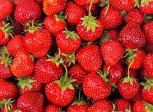 nya jordgubbar för bakgrund arkivfoto