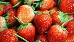 nya jordgubbar för bakgrund Arkivfoton