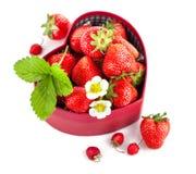Nya jordgubbar i ask som hjärta med det gröna bladet Royaltyfria Bilder