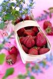 Nya jordgubbar i en korg Royaltyfri Bild