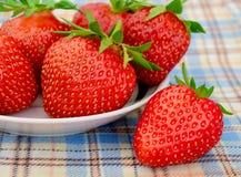 Nya jordgubbar i en vit platta på en picknickbordduk Arkivbilder