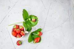 Nya jordgubbar i ett vitt porslin bowlar på trätabellen in Royaltyfri Fotografi