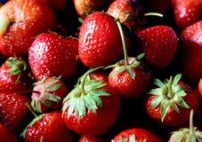Nya jordgubbar i marknad Arkivfoto