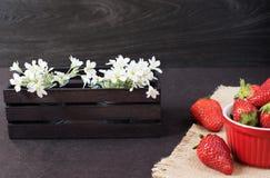 Nya jordgubbar i mini- röd bunke på hessiansjute Vit och lilan blommar i en dekorativ träspjällåda Svart bakgrund arkivfoton