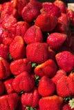Nya jordgubbar major arkivfoton