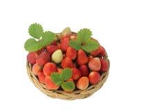 Nya jordgubbar med sidor i korgen som isoleras på vit bakgrund Royaltyfri Foto